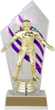 "8-inch ""Foil Highlights"" Trophy"