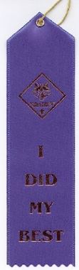 Cub Scout Ribbon