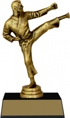 "7-inch Karate ""Competitor"" Trophy"