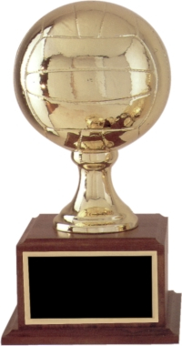 Fantasy Volleyball Trophy