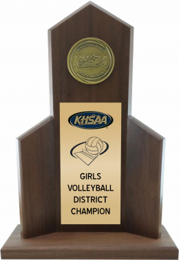 District Volleyball Champion Trophy