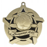 "2-1/4"" Language Arts Star Medallion - 43022-NR"