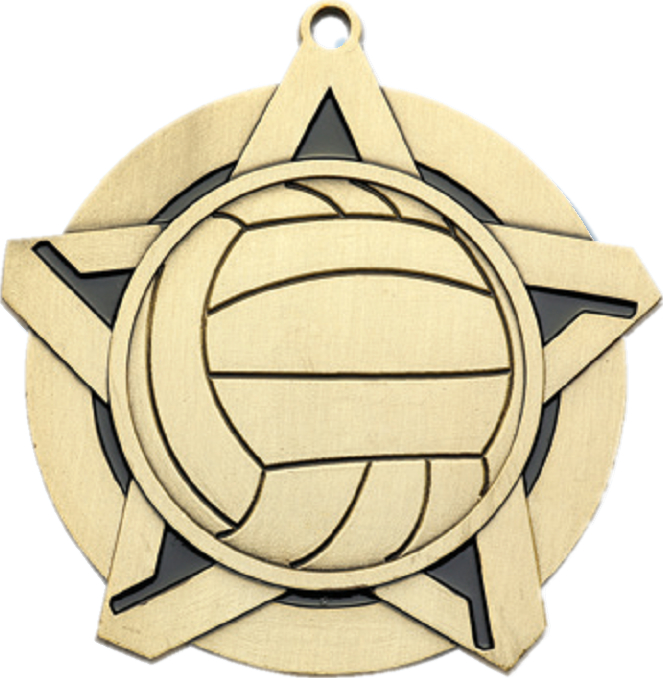 "2-1/4"" Volleyball Star Medallion - 43030-NR"