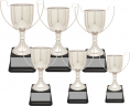 xxxSilver-Plated Cup Trophy Series - CZCG