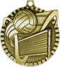"2"" Volleyball Medallion - G2M20-NR"