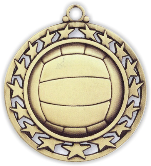 "2-1/2"" Volleyball Medallion - SSM-50-NR"