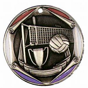 "2"" Volleyball Medallion - FR-932-NR"