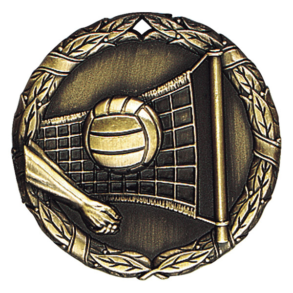 "2"" Volleyball Medallion - XR-224-NR"