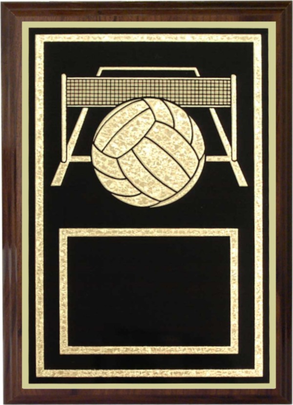 Volleyball Plaque - Z46-VB
