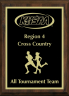 xxxKHSAA Cross Country Regional All Tournament/MVP Plaques